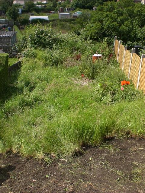 22 Plain Landscape Gardener Jobs Sheffield